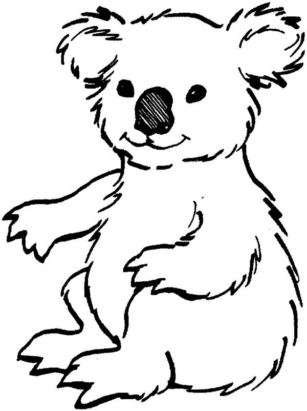 Coloring Pages Koala : Koala coloring pages clipart best