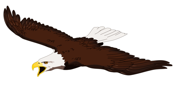 Clip Art Bald Eagle Clipart bald eagle clip art free clipart best pictures clipartix