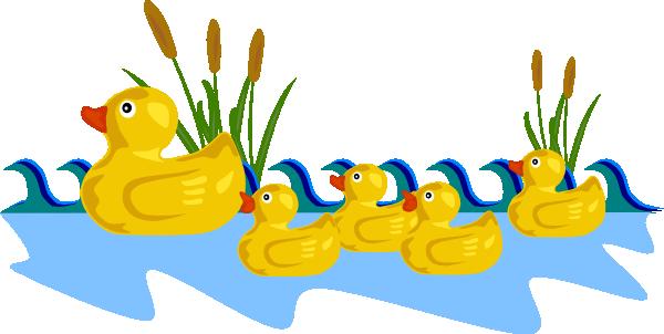 Swimming duck cartoon