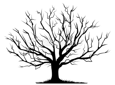 how to tell if an oak tree is dead