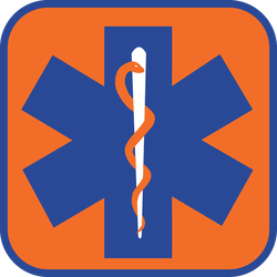 Star Of Life Orangeâ?¢ logo vector - Download in AI vector format