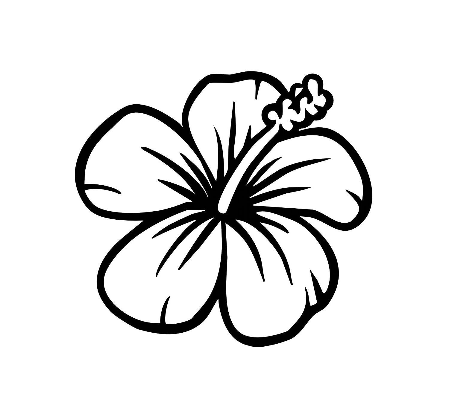 Hibiscus Flower Line Drawing : Hibiscus line drawing clipart best