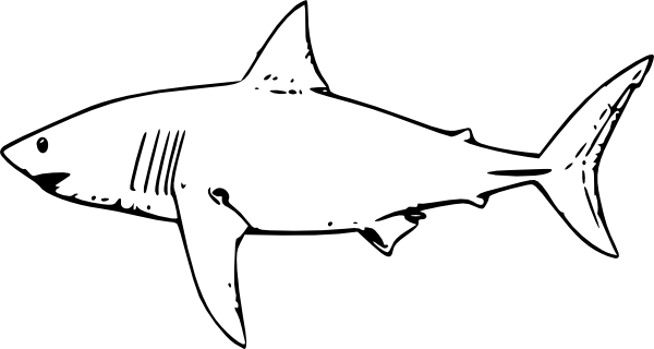 Outline Shark - ClipArt Best