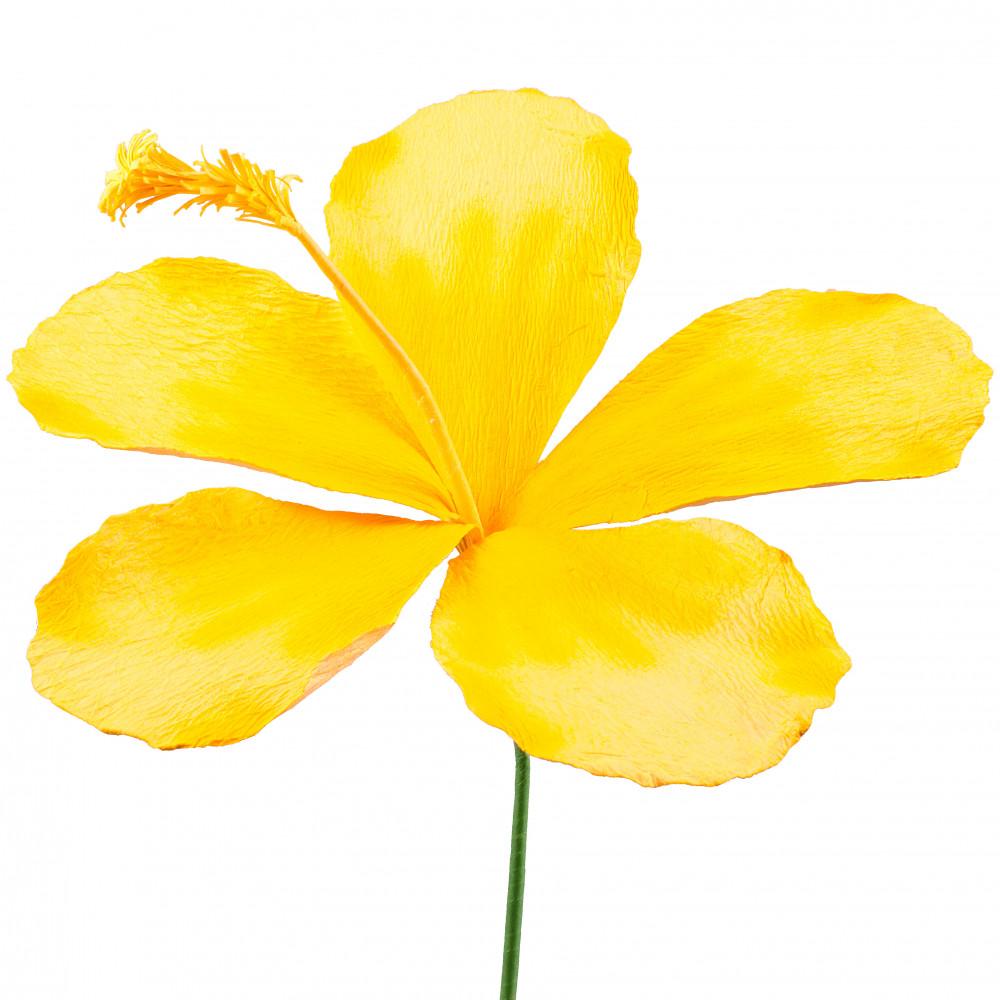 Yellow Hibiscus - ClipArt Best