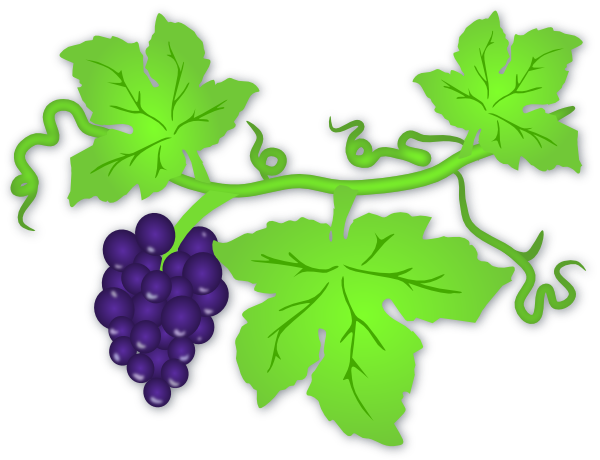 Grape Vine Clip Art Free - ClipArt Best