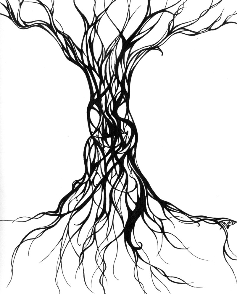 cool tree drawings clipart best