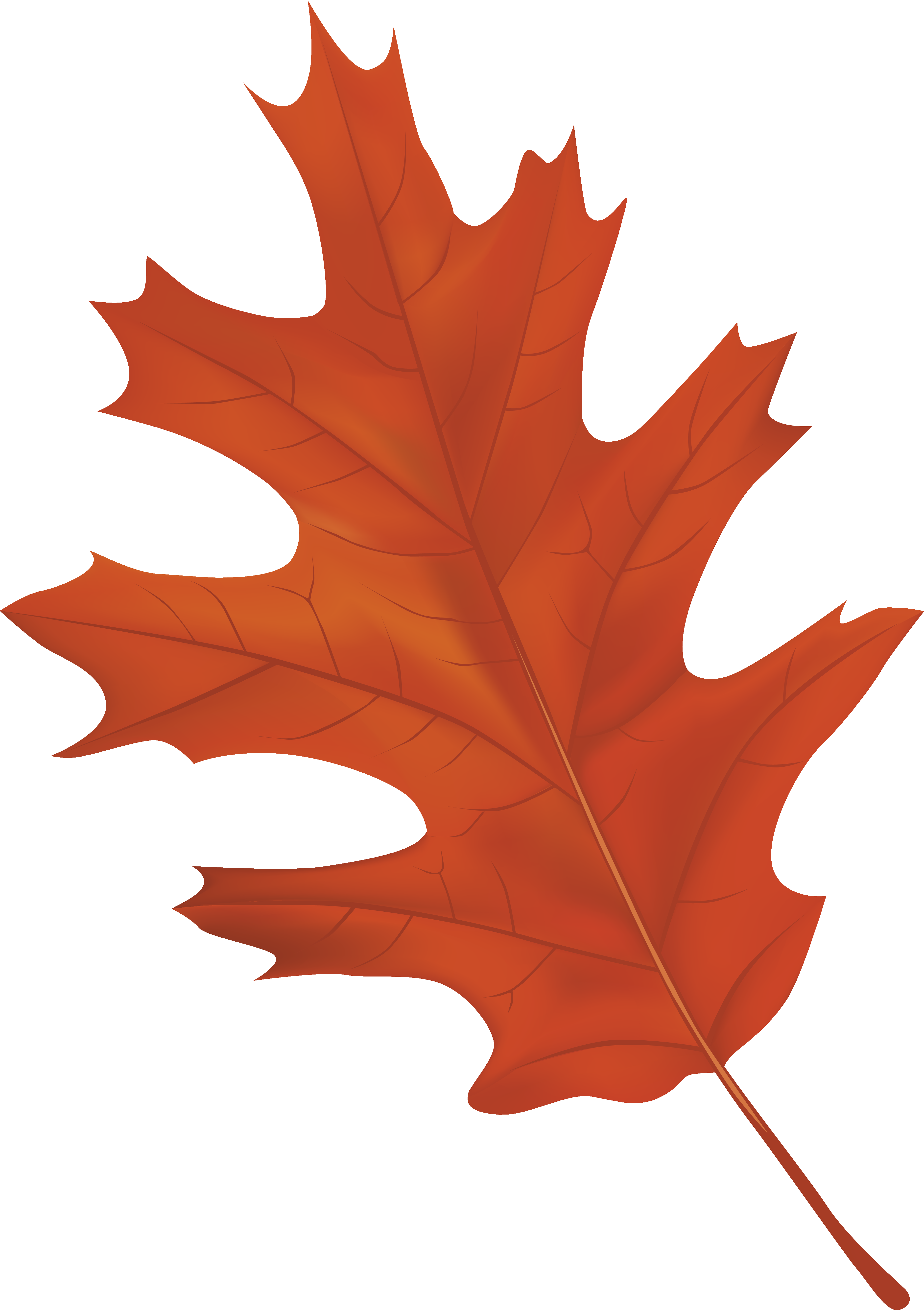 Autumn Leaf - ClipArt Best