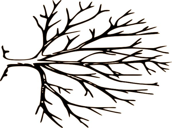 Clip Art Bare Tree Clip Art bare tree clip art free clipart best free