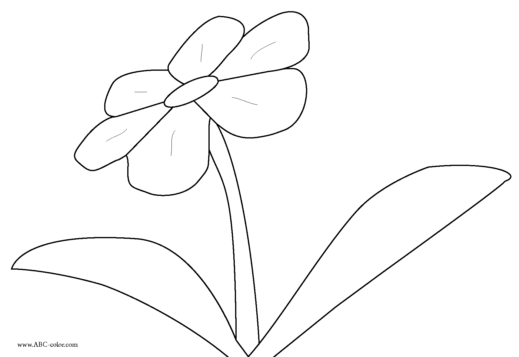 Flower Outlines For Coloring ClipArt Best