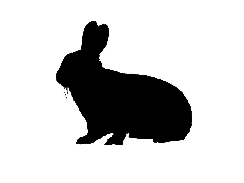 Rabbit Silhouette - ClipArt Best
