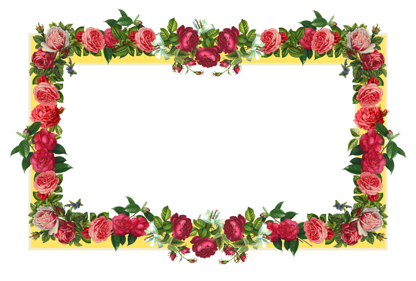 Rose Flower Border Design Frame - Border Designs - ClipArt ...