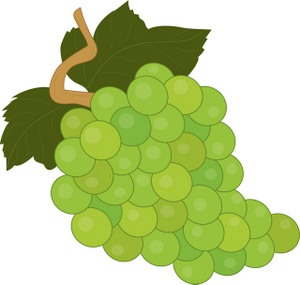 Clip Art Image Of Fruit Grape - ClipArt Best