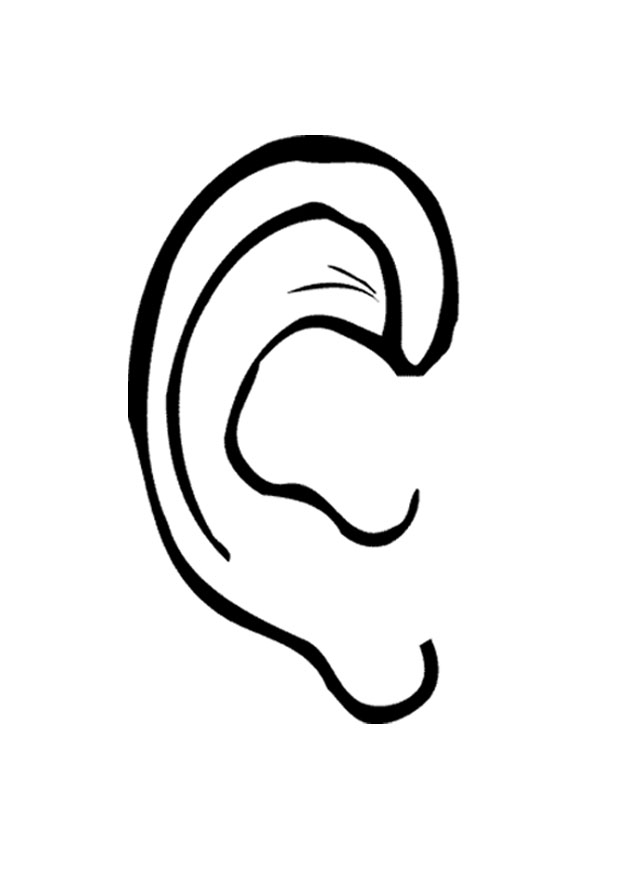 Listening Ear Clipart besides El Rey Leon Dibujos Para Colorear as well Rasta Lion Clipart further Photos Of Ears besides Un Coche En Vacaciones. on ear clip art