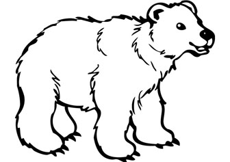 38 bear drawing . Free cliparts that you can download to you computer ...