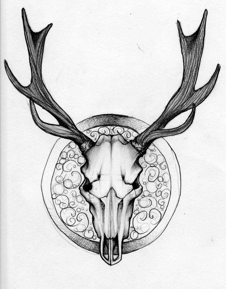 deer drawings clipart best. Black Bedroom Furniture Sets. Home Design Ideas