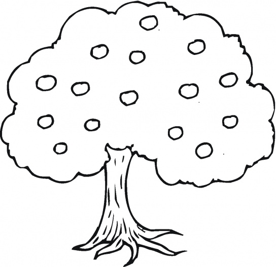 Apple Tree Coloring Pages Printable Apple Tree Coloring Pages