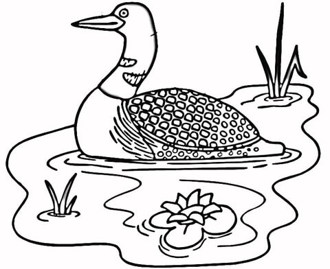 Loon in the Lake coloring page | Free Printable Coloring Pages