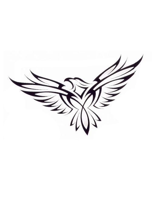 Eagle Tattoo Line Drawing : Line drawing eagle tattoo designs clipart best