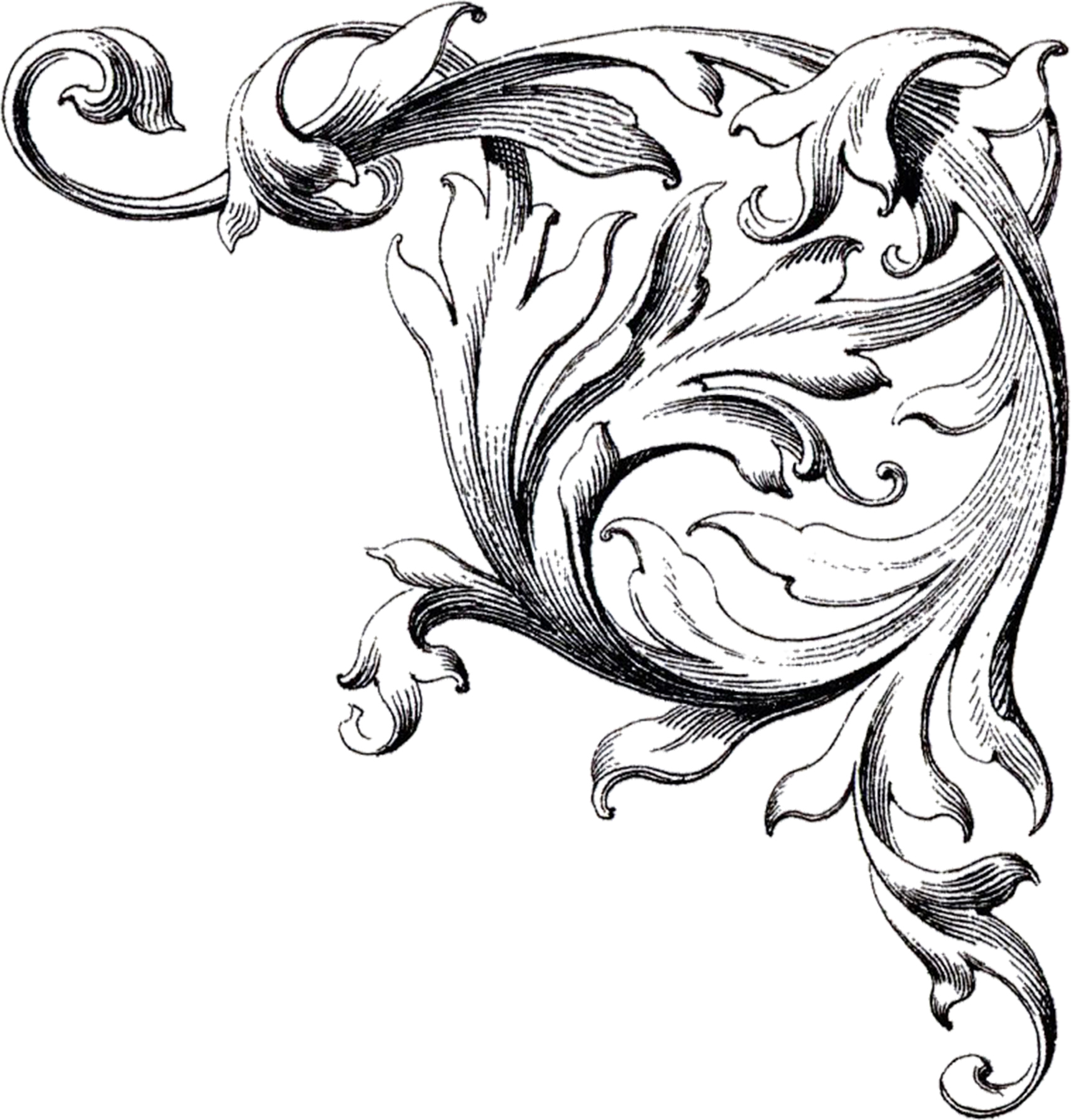 Decorative Flourish Frame together with Free Wedding Clipart Designs moreover Microsoft Word Frame further Black and white skeleton in addition Borders And Frames. on scary christmas borders