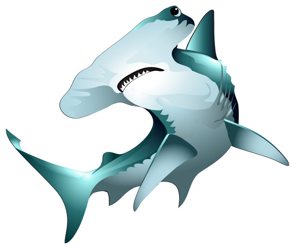 Hammerhead Shark - ClipArt Best - 40.1KB