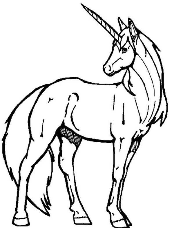 Unicorn Drawing - ClipArt Best