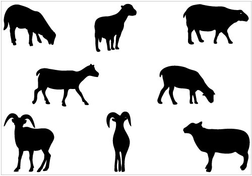 Sheep Vector Silhouette Sheep Silhouette Vector Clip
