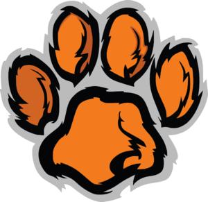 Vector Free Download Tiger