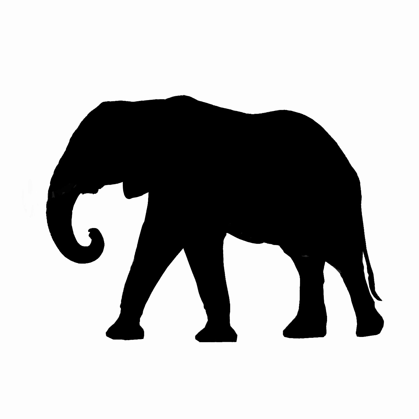 Elephant silhouette - photo#1