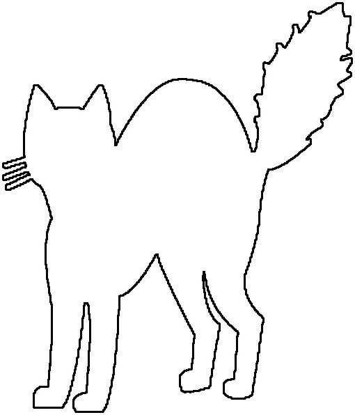 cat outline drawing clipart best