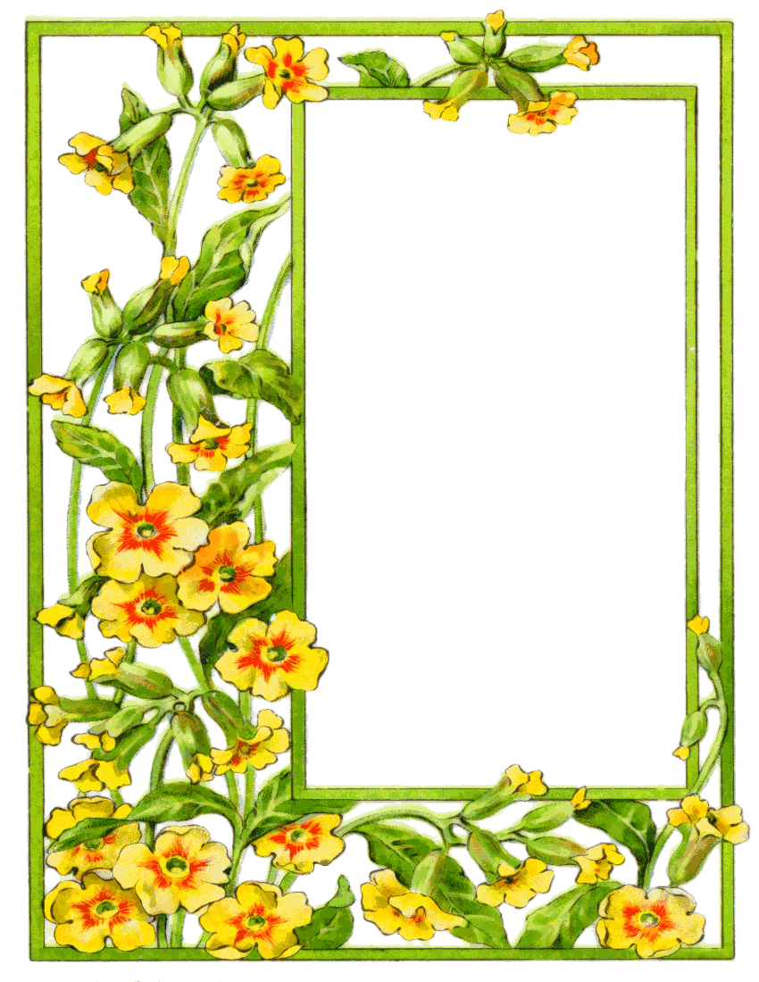 Wallpaper Floral Bright Borders - ClipArt Best