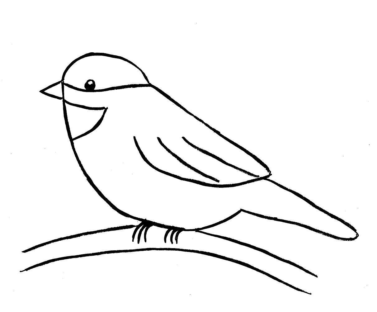 Line Drawing For Kids : Birds line drawing clipart best