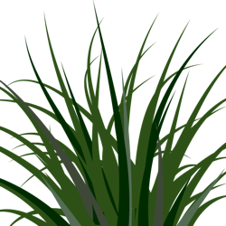 Prairie OR Field OR Wheat OR Grass - ClipArt Best