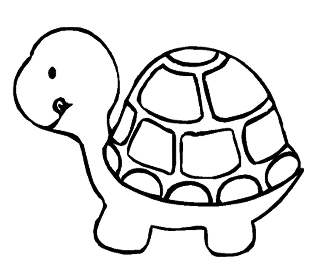 Line Drawing Turtle : Turtle line drawings clipart best