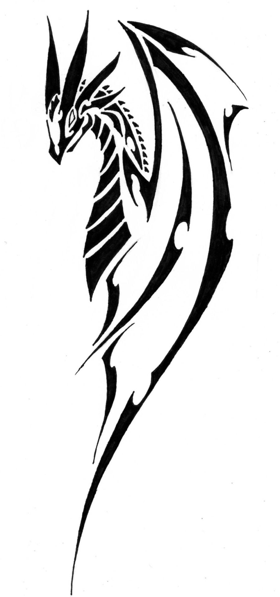 Simple Tribal Dragon Tattoo - ClipArt Best