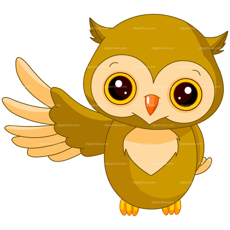 Free Clipart Pictures Of Owls