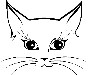 easy cat face drawing clipart best