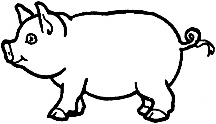 Pig template for preschoolers clipart best for Pig template for preschoolers