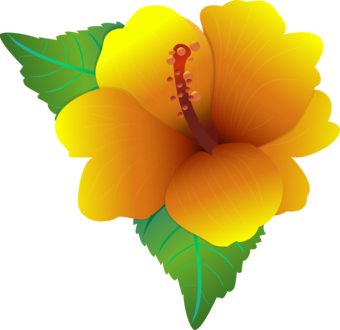 Yellow Hibiscus Images - ClipArt Best