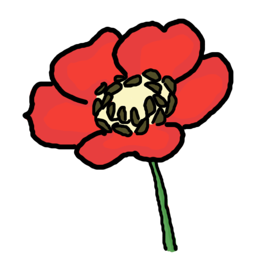 Poppy Outline Clipart Best
