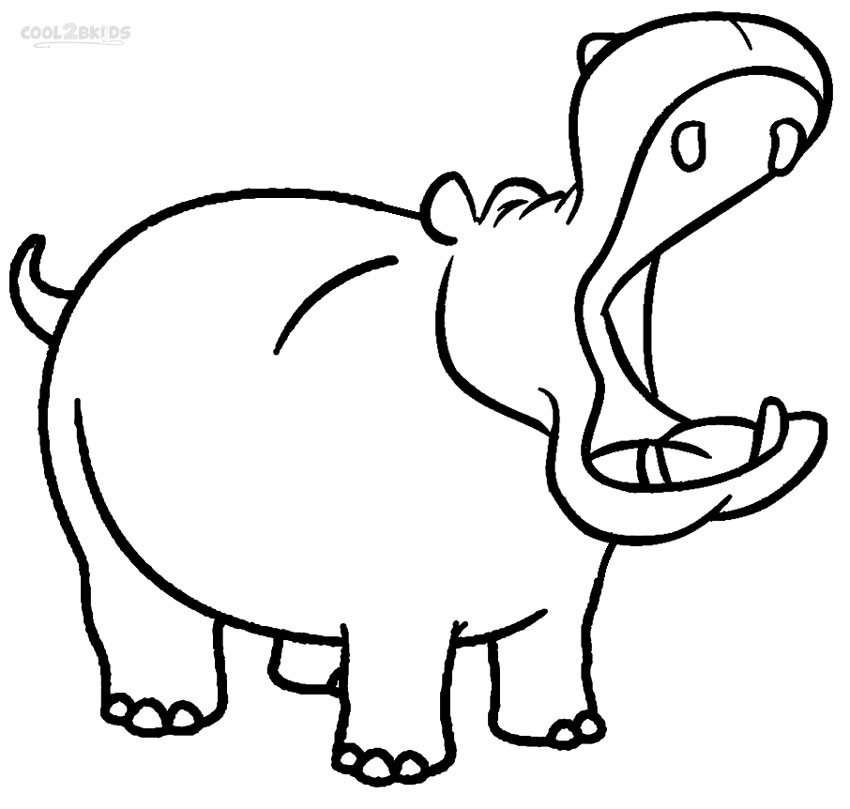 Line Art Hippo : Drawing of hippo clipart best