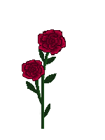 Rose Vine Png - ClipArt Best