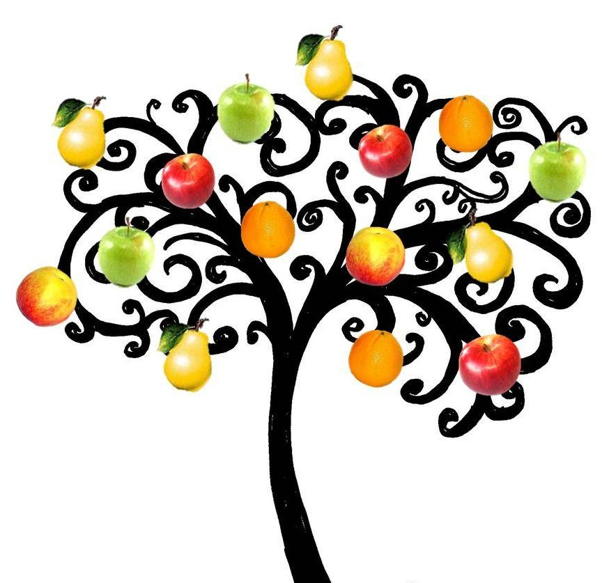 free fruit tree clipart - photo #28