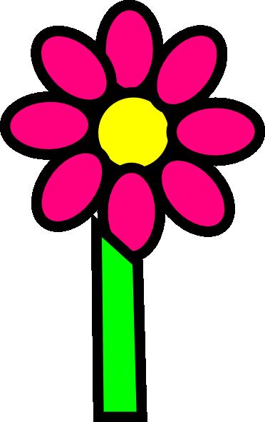 Nelumbo nucifera  Wikipedia