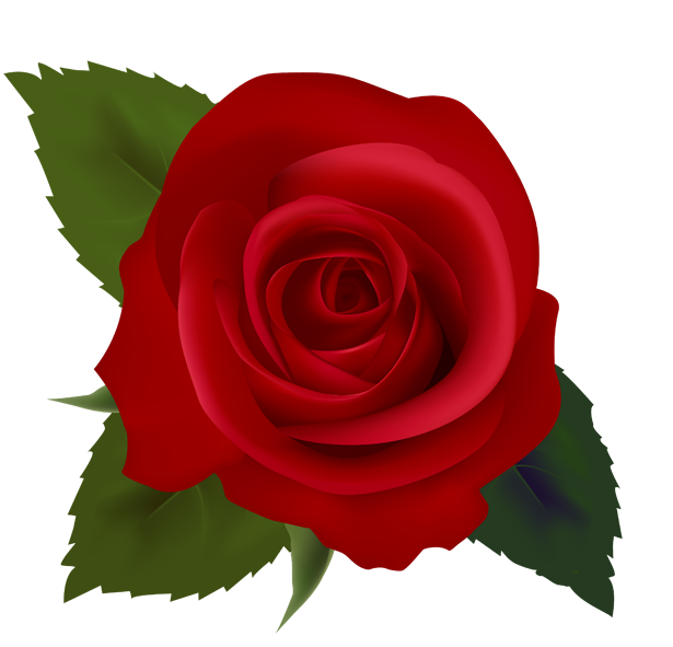 valentine roses clipart clipart best