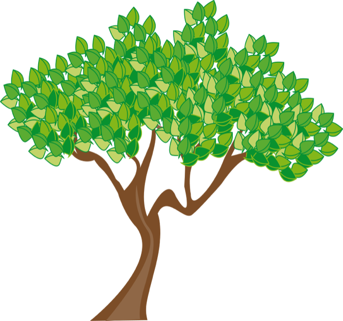 Clipart tree leaves transparent png images