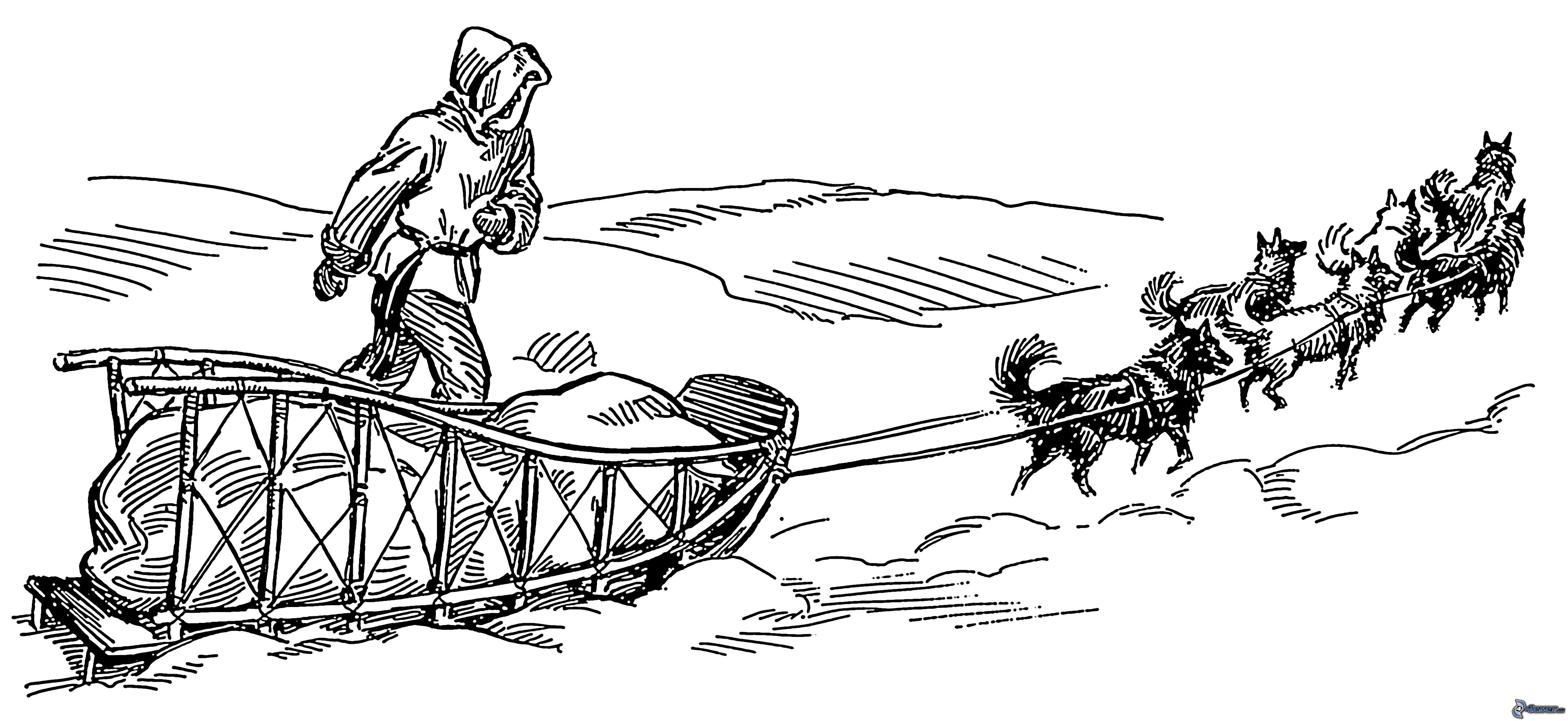 dog sled races coloring pages - photo#13