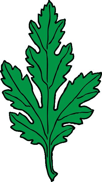 Ivy leaf green chrysanthemum clip art - vector clip art online