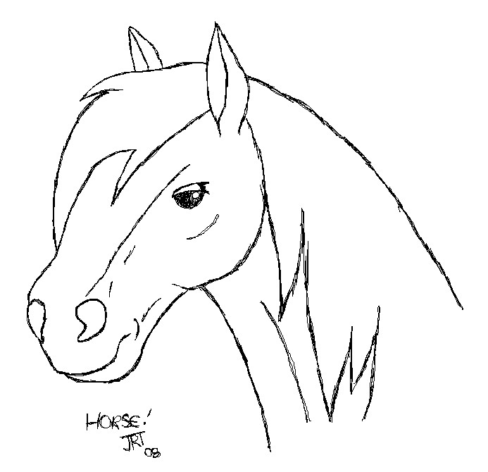 Horse Outline Picture ClipArt Best
