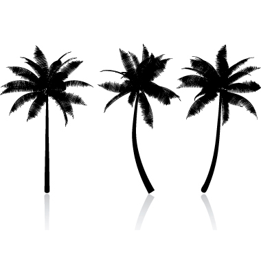 Vector Palm Tree - ClipArt Best