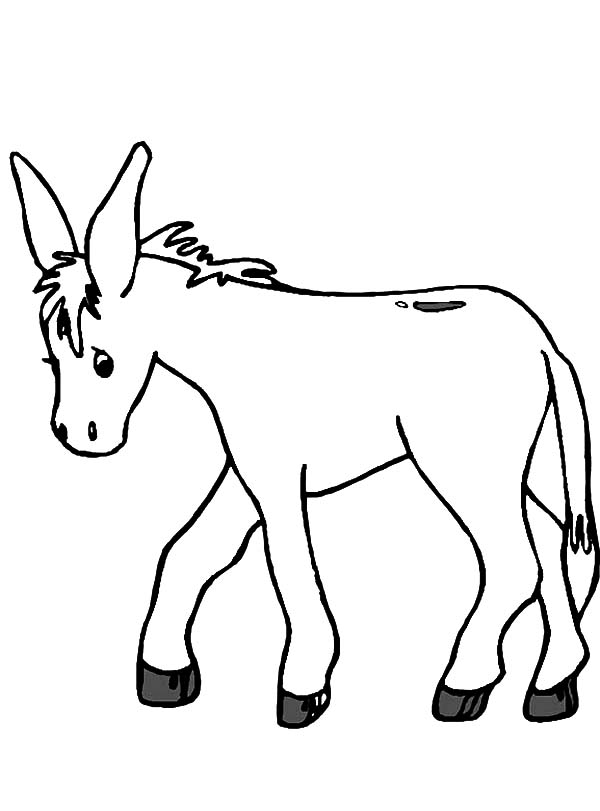 donkey drawing clipart best